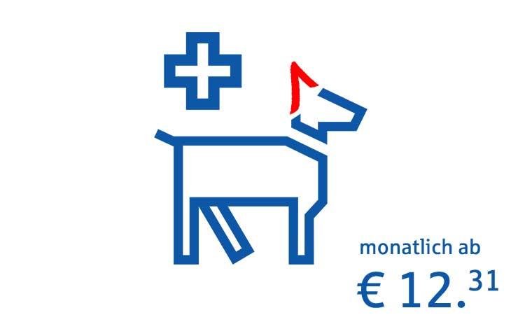 OP- und Krankenversicherung Hund