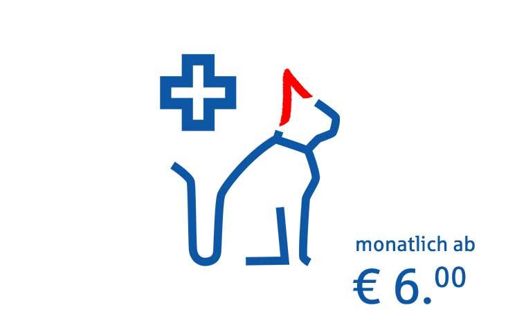 OP- und Krankenversicherung Katze